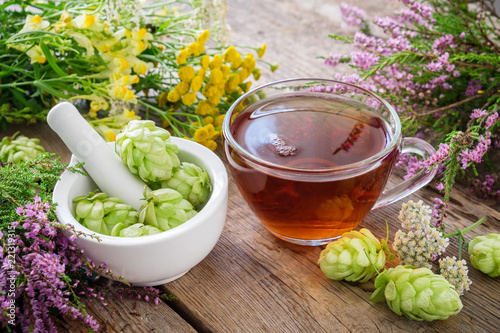 Mortar of hop cones, medicinal herbs and healthy herbal tea. Herbal medicine.