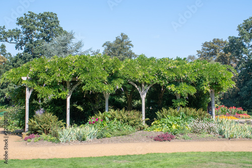 Large garden Arbour covered in plants Fototapet