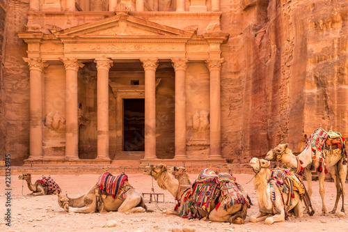 Camels resting near the ancient temple in Petra, Jordan