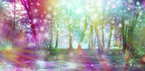 Fototapeta Tęcza - Supernatural Fantasy Woodland Scene - multicoloured row of trees with many white orb lights, sparkles and shafts of coloured light