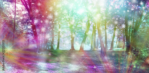 Fotografie, Obraz  Supernatural Fantasy Woodland Scene - multicoloured row of trees with many white