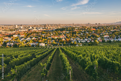 Fotografia  View from vineyards over Nussdorf in Vienna