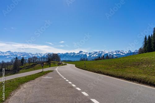 Fotografie, Obraz  Sunny Miday on road looking towards Alps