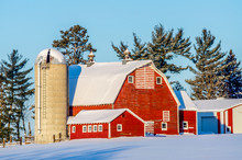 Winter At A Minnesota Farmstead
