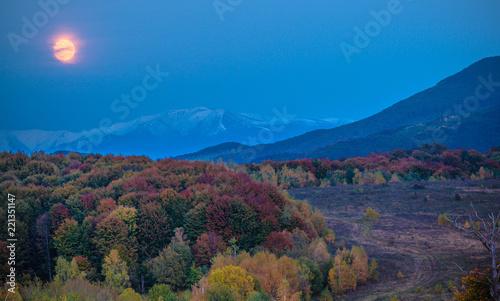 Staande foto Aubergine Landscapes of Autumn Carpathian Mountains