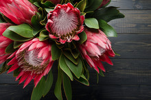 Bunch Of Red Artichoke Protea
