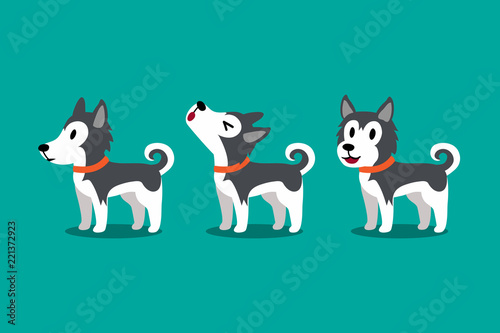 Set of vector cartoon character cute siberian husky dog poses for design.