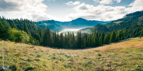 Spoed Foto op Canvas Bleke violet panorama of mountain and foggy valley. beautiful landscape with spruce forest on the hill. wonderful weather in Apuseni Natural Park of Romania at sunrise