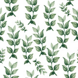 Hand drawn watercolor tropical plants set exotic leaves hand draw - 221383527