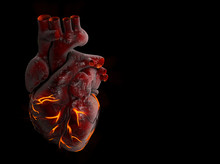 3d Illustration Of Human Heart With Fire Vein.