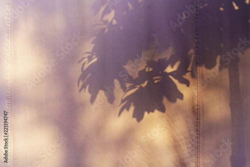 Deurstickers Bomen Beautiful shadow of tree and leaves on canvas for background