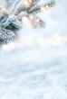 Leinwanddruck Bild - Fir branches in winter