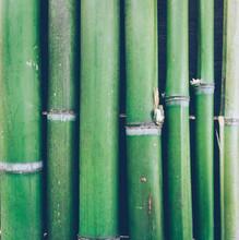 Green Bamboo Texture Backgroun...