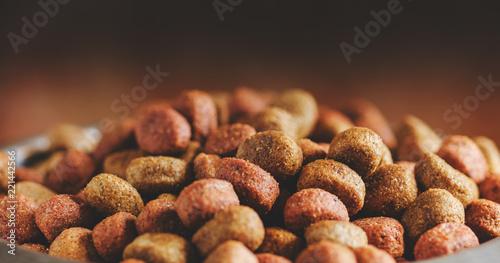 Fototapeta Dry dog food close-up. Food background obraz