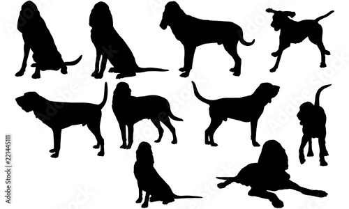Bloodhound Dog svg files cricut,  silhouette clip art, Vector illustration eps, Fototapet
