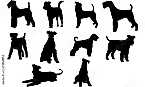 Airedale Terrier Dog svg files cricut,  silhouette clip art, Vector illustration Canvas Print