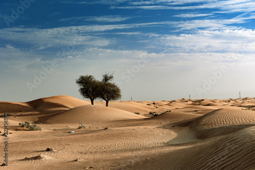 Scenic View of Sharjah Desert