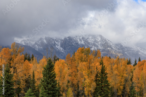 Spoed Foto op Canvas Bleke violet Grand Teton National Park Autumn Landscape
