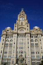 Royal Liver Building In Liverpool With Clock View