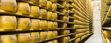 Parmigiano Cheese Factory Prod...