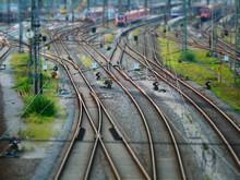 Tilt Shift View On Signal Lights Next To Railway Tracks