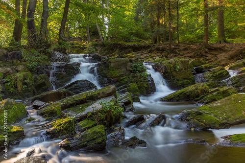 Fototapeten Forest river Wasserfall