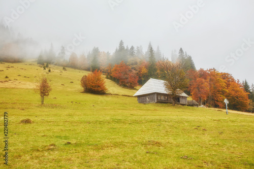 Deurstickers Honing Colorful autumn landscape in the mountain village. Foggy morning in the Carpathian mountains.