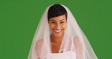 Closeup Of Happy Bride In Wedd...