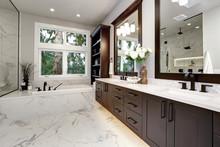 Master Bathroom Interior In Lu...
