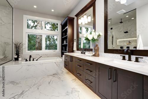 Obraz Master bathroom interior in luxury modern home with dark hardwood cabinets, white tub and glass door shower - fototapety do salonu