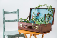 茶色トランクに木製のイスとテーブル