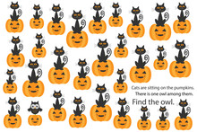 Find Owl Among Cats On Pumpkin...
