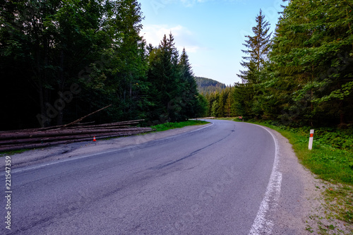 Staande foto Lavendel asphalted road leading up to the mountains in forest