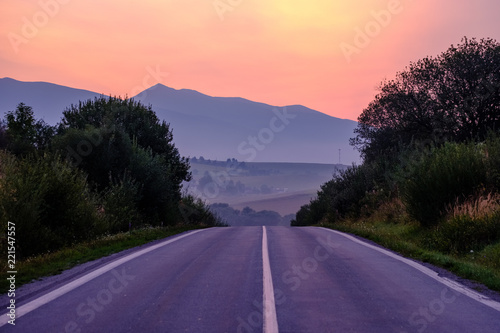 Foto op Aluminium Aubergine asphalted road leading up to the mountains in forest