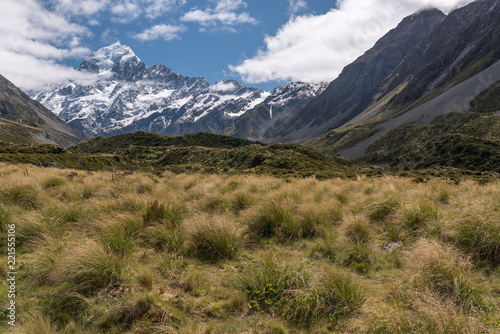 Fotografia, Obraz  Tussock grass on the floor of the Hooker Valley with Mount Cook in the background