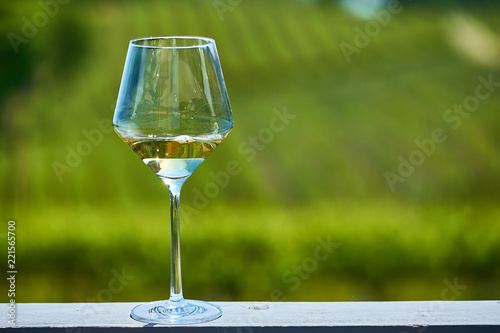 Papiers peints Nature Glass of white wine and vineyards