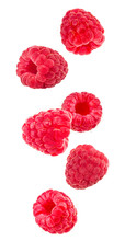 Falling Raspberries Isolated On A White Background