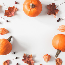 Autumn Composition. Pumpkins, Dried Leaves On Pastel Gray Background. Autumn, Fall, Halloween Concept. Flat Lay, Top View, Square, Copy Space