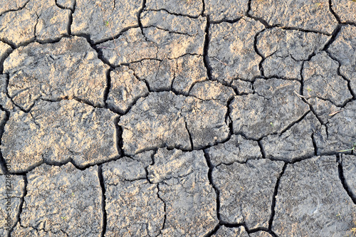 Cracks in the ground. Dry, dehydrated soil. Drought. Ecological catastrophy