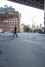 Woman Walking Dog Across Street In The DUMBO Neighborhood Of Brooklyn In New York City