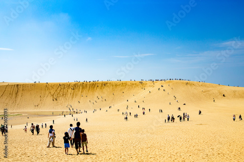 Poster de jardin Desert de sable 鳥取砂丘、オアシス、馬の背
