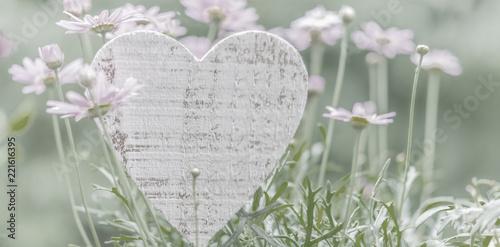 Fotografie, Obraz Blumenwiese rosa mit Herz zum Beschreiben