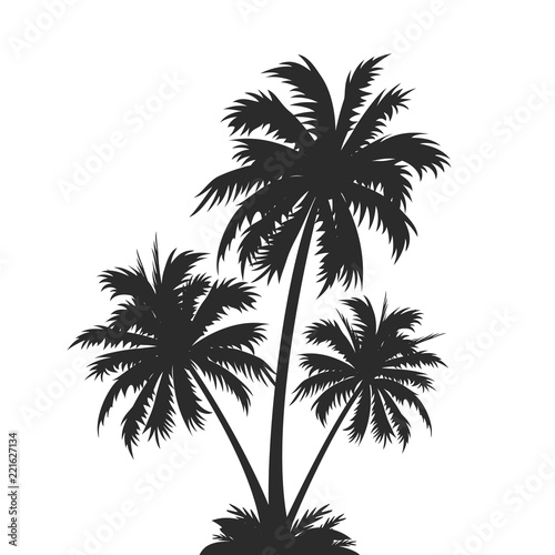 Palm tree silhouettes – stock vector Wall mural