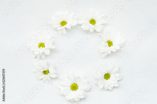 Foto op Canvas Madeliefjes daisy wreath on white background. herbera flowers in a circle. minimalist floral decor. empty space concept