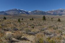 Sierra Nevada Mountains And Foothills Near Mono Lake Area Lee Vining, Mono County, California