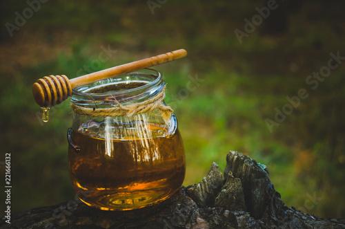 Photo Jar of fresh honey and honey spoon on pine tree in woods.