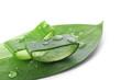 Leinwanddruck Bild - Fresh aloe vera slices on white background