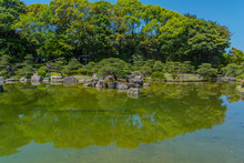 A Typical Japanese Garden