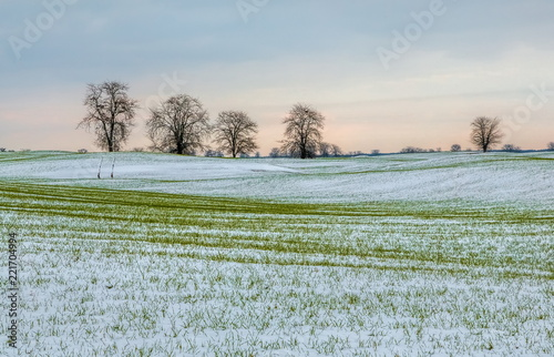 Poster Donkergrijs Winter fields in the snow. Winter. Wheat. Winter fields. South of Russia.