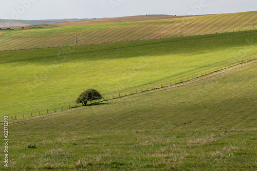 In de dag Pistache Green Sussex Landscape